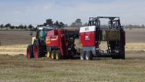 Piaţa de vânzare Schütz Landmaschinen OHG